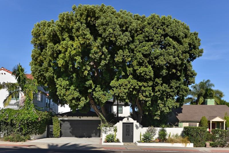 1418 Torrey Pines Road -  La Jolla, CA 92037