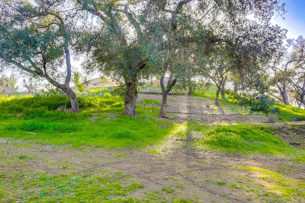 17198 Highland Meadow Ct. -  Ramona, CA 92065