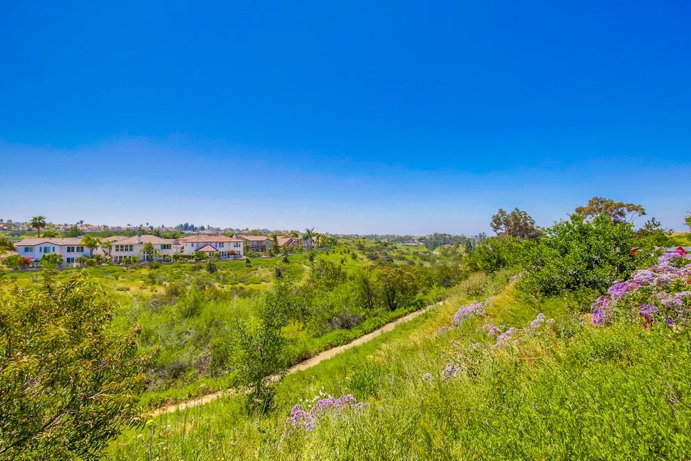 8505  Adobe Bluffs Drive -  San Diego, CA 92129